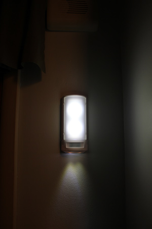 GE LED Wall Sconce Motion Detect