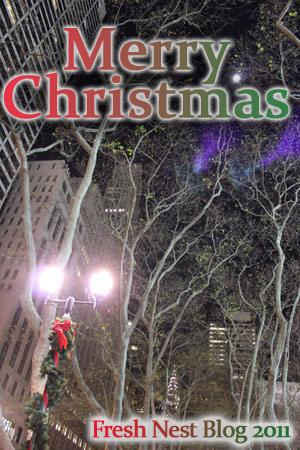 Merry Christmas from Fresh Nest Blog