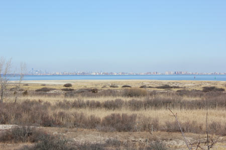 Sandy Hook observation deck - view of NYC