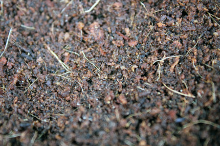 Peat and Potting Mix