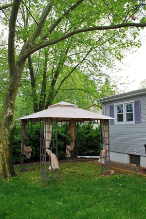 Backyard Canopy